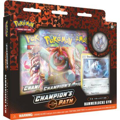 Pokémon Champion's Path Hammerlocke Town Nintendo games